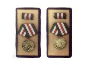 Medalla de la Alfabetización